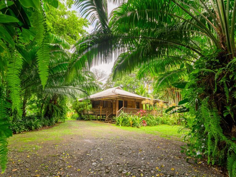 casaviva-bungalow3-garden